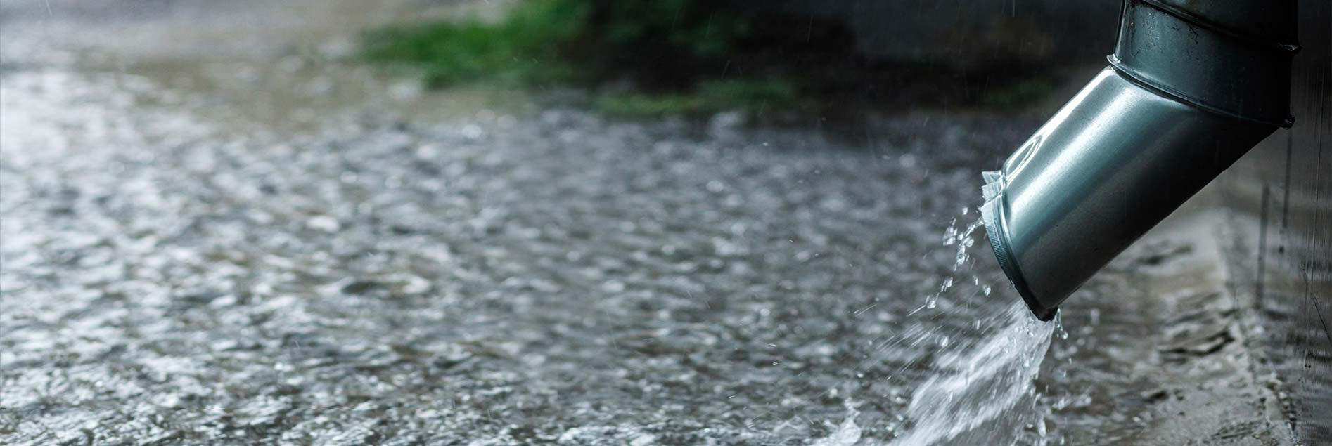 Catch Rainwater