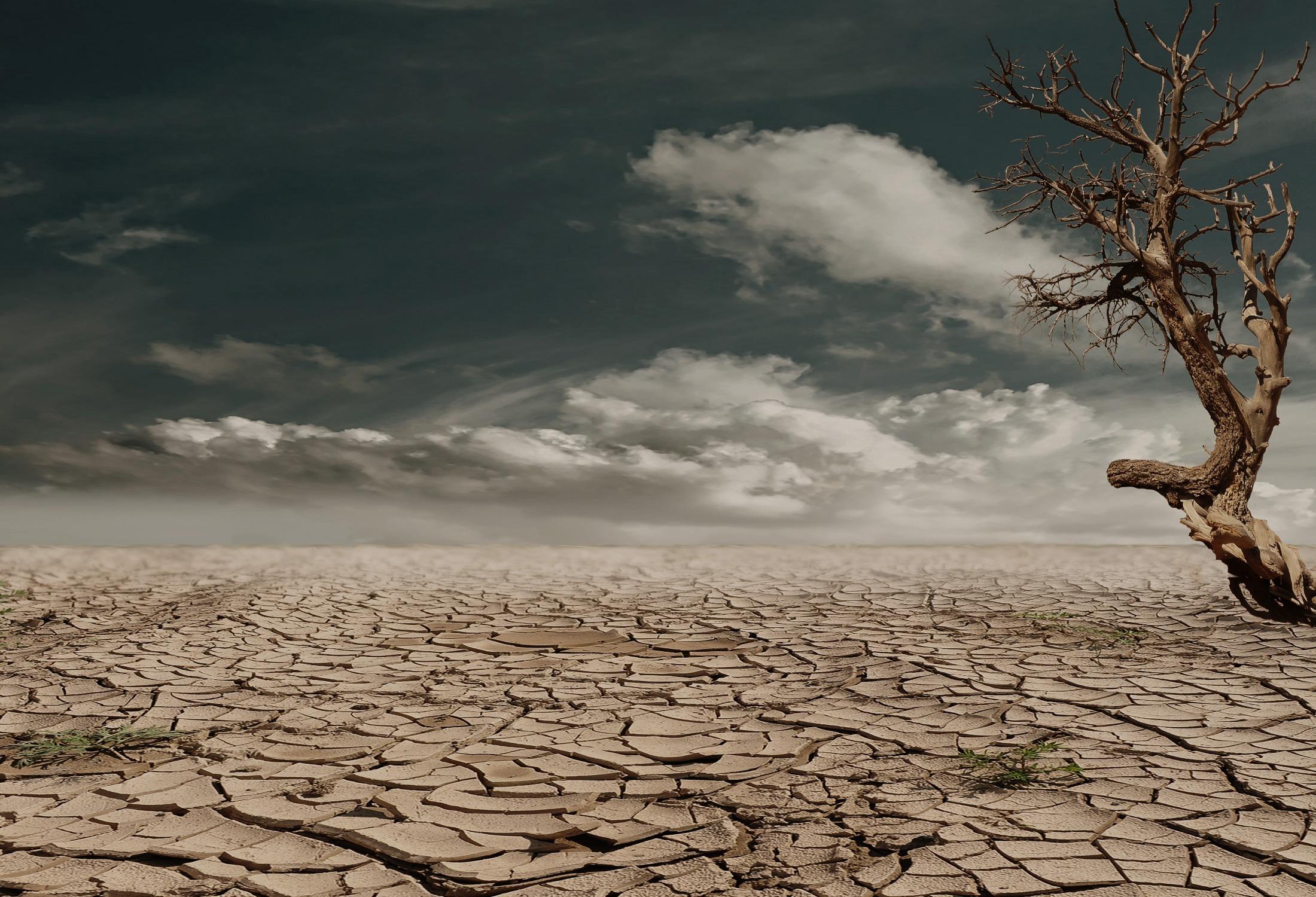 Národní konference na téma sucho