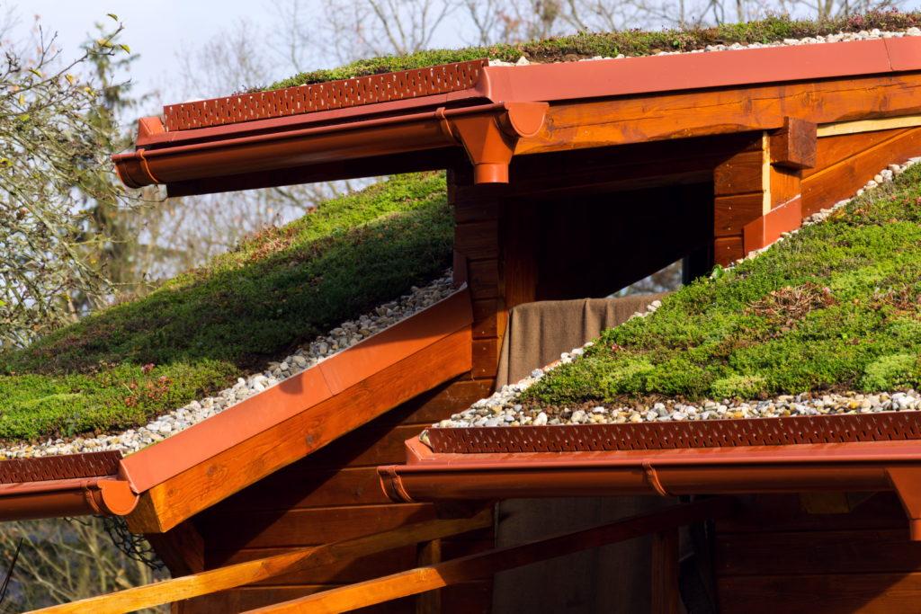 Zářijový seminář na téma zelených střech