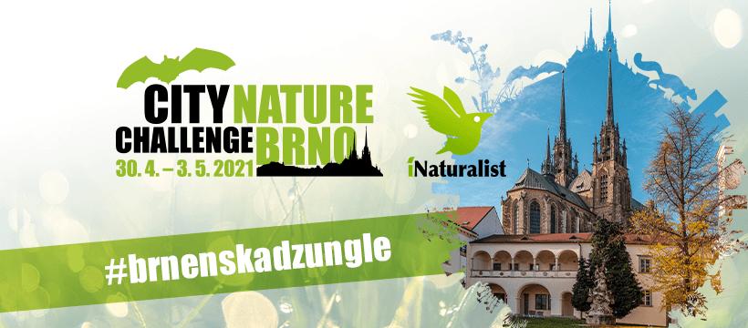 CITY NATURE CHALLENGE BRNO – Brněnská džungle